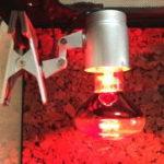 トカゲ(爬虫類)を健康に育てる保温器具とバスキングライトとは 違いと選び方